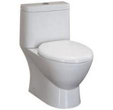 Eago TB346 One-Piece Dual Flush Toilet with Soft Close Seat