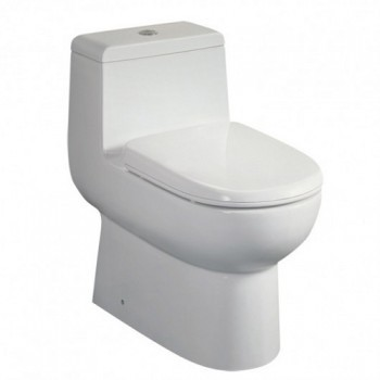 Eago TB351 One-Piece Dual Flush Toilet with Soft Close Seat