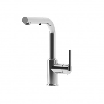 Kalia KF1117 Cite Surfer Pull Out Kitchen Faucet With Spray Head