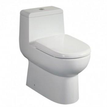 Eago TB351 One-Piece Dual Flush Toilet with Soft Close Seat